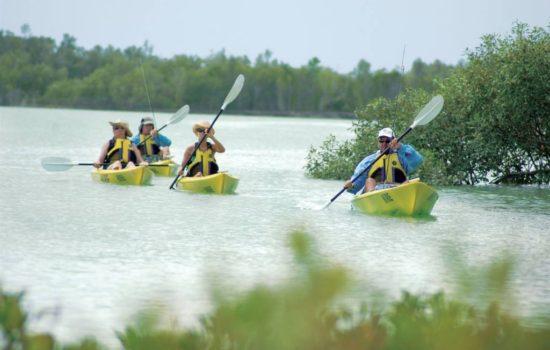 kayak2-smaller-1.jpg.1024x0